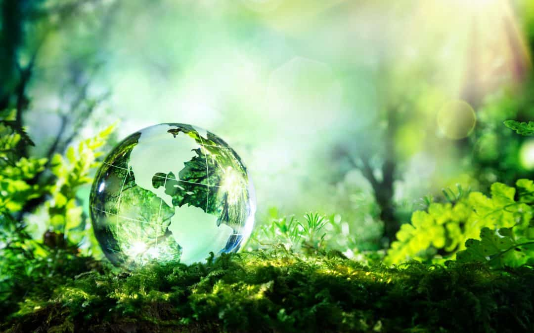 Unknown Environmental Issues That Could Affect Site Development